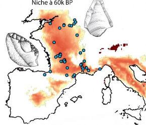 Les Néandertaliens étaient capables de s'adapter au changement climatique