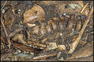Antiquity :  LA CAVITE D'IROUNGOU